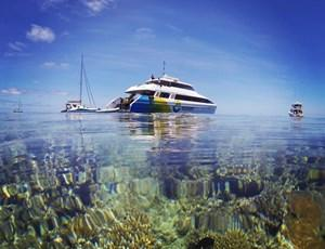 Explore's Great Barrier Reef day trips