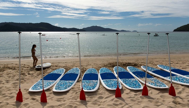 Clash of the paddles on Hamilton Island