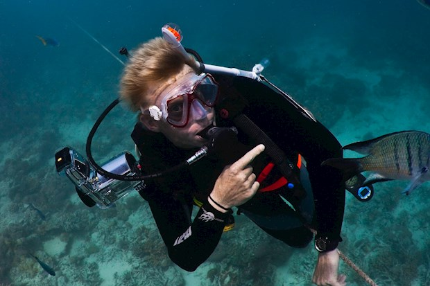 Many people decide to experience a greate diving experience with Ben Southall during their luxury Hamilton Island vacation