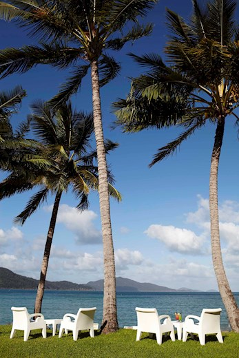 Sails chairs overlooking Catseye Beach on Hamilton Island. Enjoy your honeymoon holiday to the fullest.