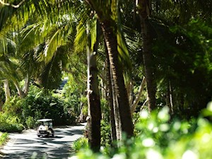 Golf buggy on the resort side of Hamilton Island
