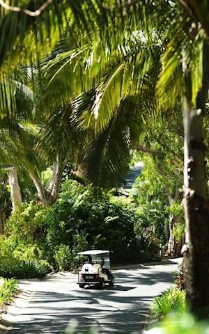 Things to do on Hamilton Island, Whitsundays & Great ...