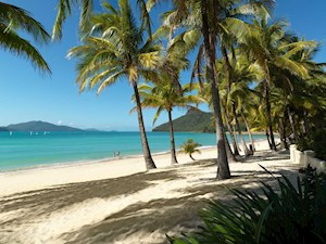 Catseye Beach on Hamilton Island, Queensland