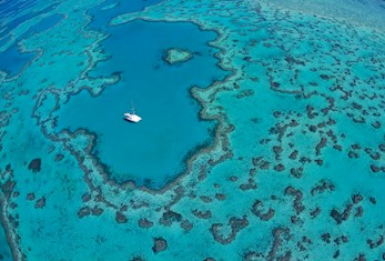 Aerial Shot of the Heart Reef - must visit destination for your perfect Australian holiday