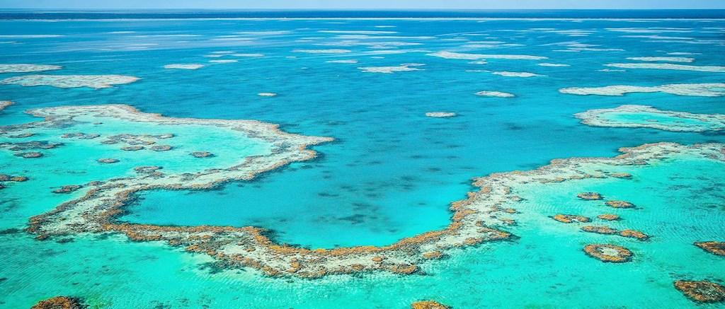 [Image: reef-rings.jpg?width=1024&height=437&mod...012,0.4675]