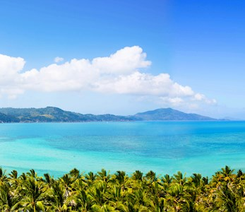 Hamilton Island accommodation - view of Catseye Beach from the Reef View Hotel