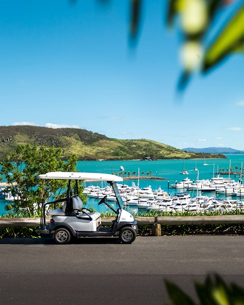 0f154a7f15 Buggy Hire · Shuttle Bus. Buggy overlooking the Hamilton Island Marina