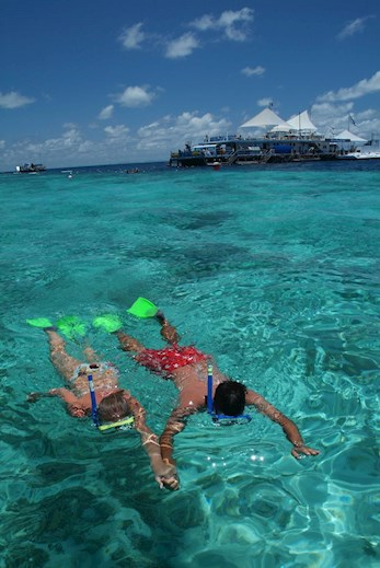 Snorkel at the Great Barrier Reef with a half-day or full-day trip from Hamilton Island