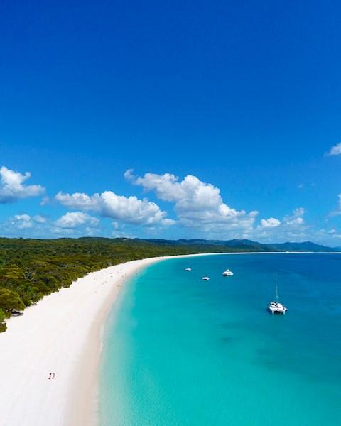 Cruise Whitsundays | Whitehaven Beach Half Day | Hamilton