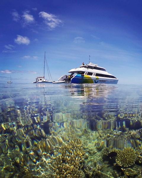 Great Barrier Reef | Hamilton Island Accommodation