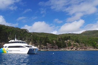 Visit Hook Island from Hamilton Island Australia