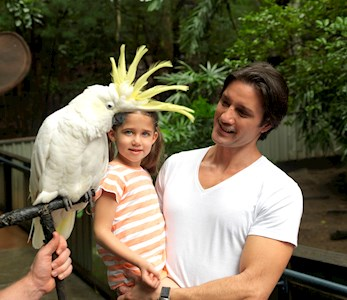 See Australian birds at WILD LIFE Hamilton Island - family packages Hamilton Island