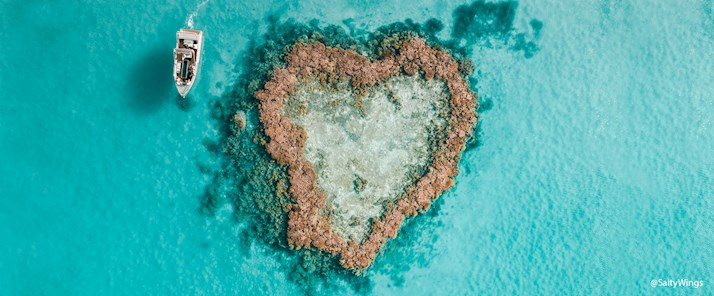 Journey to the Heart. Heart Island and Heart Reef glass bottom boat © @Hamilton Island, @SaltyWings