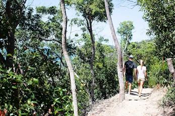 Romantic bushwalk across the island - Honeymoon holiday Hamilton Island