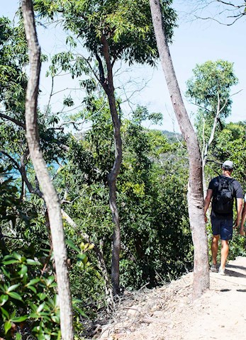 Romantic bushwalk across the island - Honeymoon holiday Hamilton Island