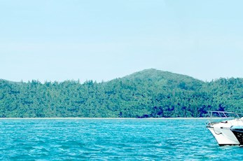 Try your hand at predator fishing - half day charter from Hamilton Island