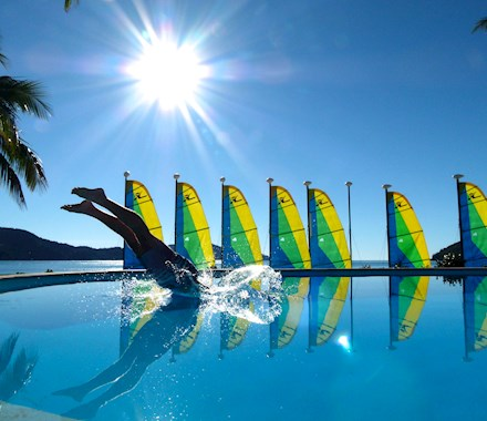 Dive into dolphin pool at Hamilton island