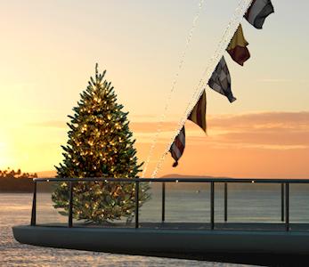 Christmas tree at hamilton island