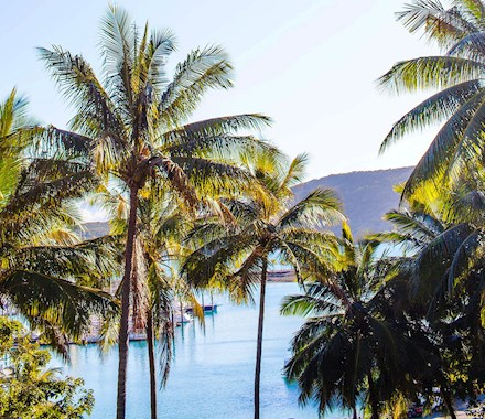 Hamilton Island is the ideal Queensland family holiday destination proving popular when Queensland family holiday packages and Queensland hotels are on sale.