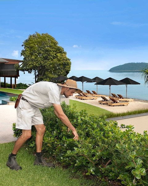 join our team job opportunities at whitsundays hamilton island
