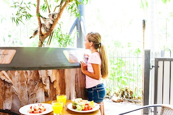 Enjoy a meal with the animals at WILD LIFE Cafe - Hamilton Island family holiday