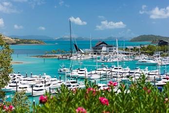 Hamilton Island Marina - boat excursions - Hamilton Island holidays