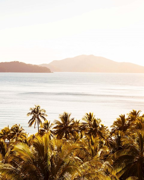 Selling Tools | Hamilton Island Holiday Packages