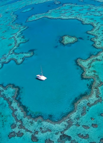 Explore the Heart Reef and the Great Barrier Reef by boat - Hamilton Island family holidays